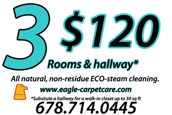 steam cleaning carpet cleaning special